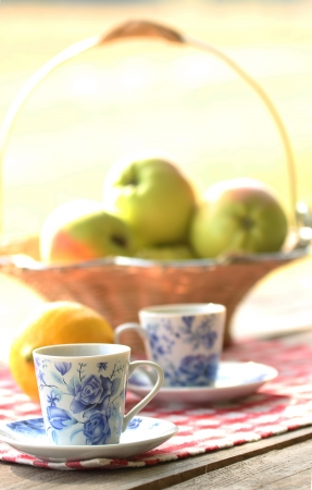 tea and fruit outdoors at picnic photo