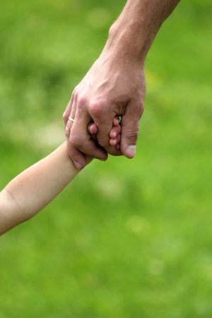dad and child: hand of parent and child in nature