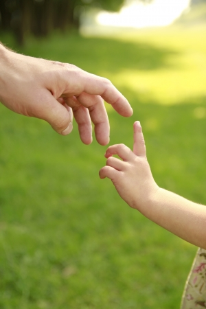 a hand of parent and child in nature photo