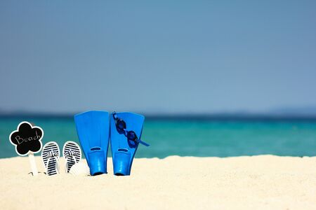 flippers on the sand at sea on summer