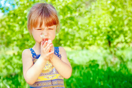 happy child blowing dandelion on nature in the park
