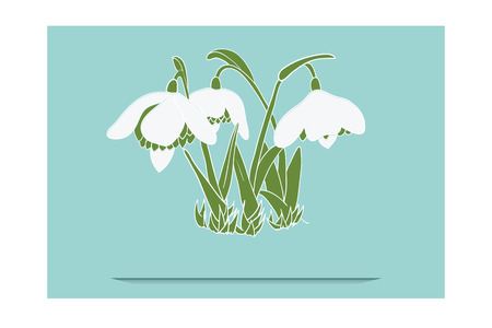 Hand drawn illustrated greeting card with snowdrops. Illustration has been expanded, no gradient used, blend used for bottom line, just add text.  Vector