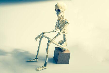 Model of artificial Human Skeleton on gray background Stock fotó