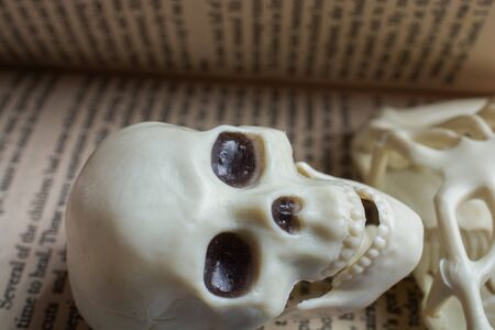 Model of artificial Human Skeleton in a book with text
