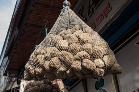 Collection of sea sponges hanging on a market stall 版權商用圖片