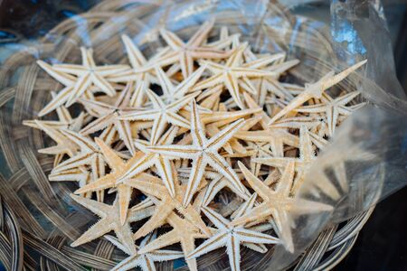Natural materials of tropical starfish for travel concept 版權商用圖片