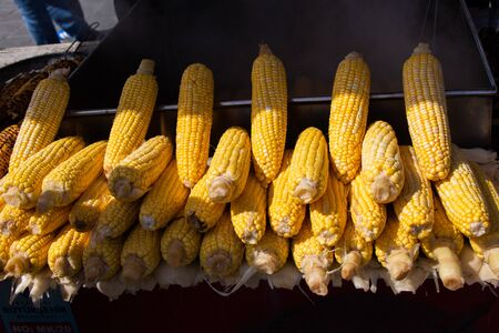 Grains of yellow ripe corn. uncooked corn in view