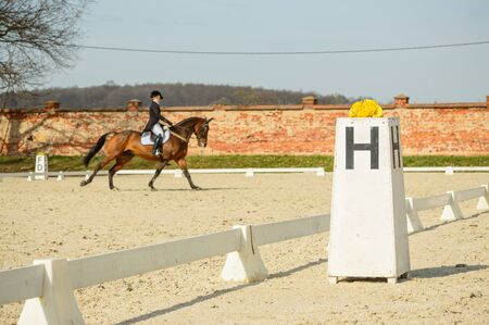 Poland, Horse riding stable, information rails for riders Stock Photo