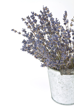 Blätter von getrockneten Lavendel in einem Metall-Topf Standard-Bild - 63273797