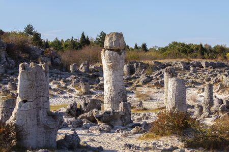 Natural rock phenomenon, Pobiti Kamani, Aksakovo Municipality, Varna District, Bulgaria. In the late afternoon.Selective focus with shallow depth of field. Stock Photo