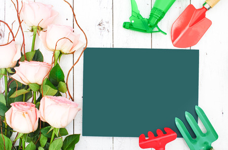 Gardening Tools with Pink Rose Vintage on White Wooden Background, Gardening Summer Concept, Flat Lay Style