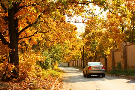 road autumnal: Car will go along the road. Autumnal trees. Stock Photo