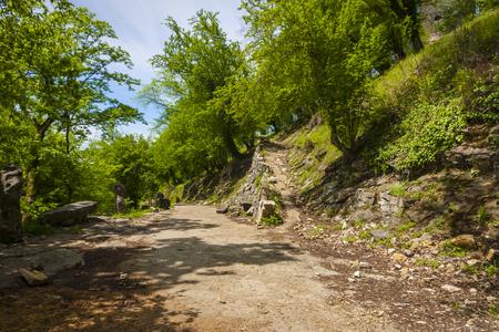 abkhazia: road to the mountains of Abkhazia