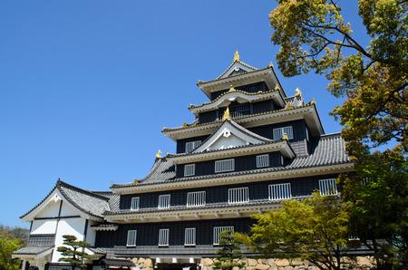 okayama: Okayama Castle