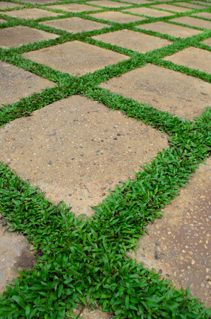 stepping: stepping stone on grass