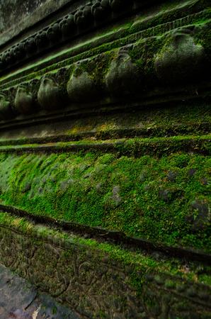 algae: algae on carved wall of Beng Mealea