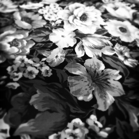 print: Floral design print in fabric in black and white