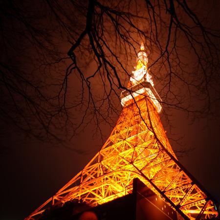 Tokyo Tower illuminating warm lights behind the trees