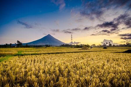 mayon: Majestic Mt. Mayon, Albay, Philippines