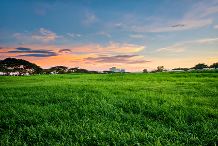 Sunset at open grass field at Sta. Rosa, Laguna, Philippines. 免版税图像