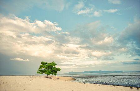 Sunrise of  Lakawon Beach at Cadiz, Negros Occidental.