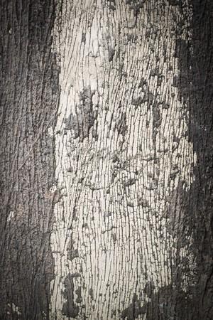 grunge old painted cracked peeling wood texture background photo