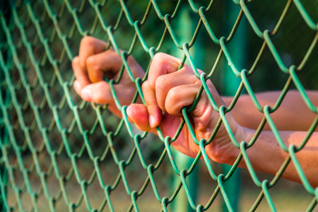 incarcerated: hand on the chain-link fence,concept of life imprisonment