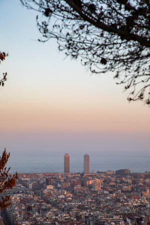 Views of the city of Barcelona during sunset with copy space and tree frame