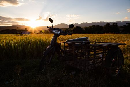 Vintage scooter and sidecar on rice field with back-lighting and copy space