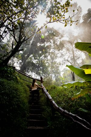 Beautiful woman on stairs on a foggy and wet rainforest path in Chiang Mai (Thailand) with copy space