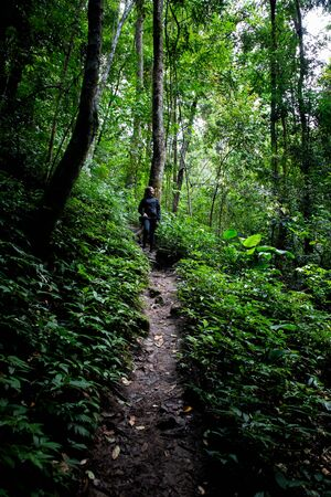 Beautiful woman hiking on path in a rainforest in Chiang Mai (Thailand) with copy space 写真素材