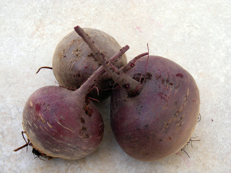 beet: red beet plant