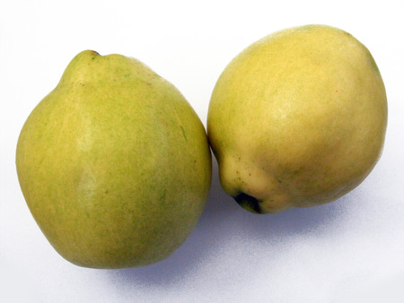 quince: nice juicy quince from each other Stock Photo