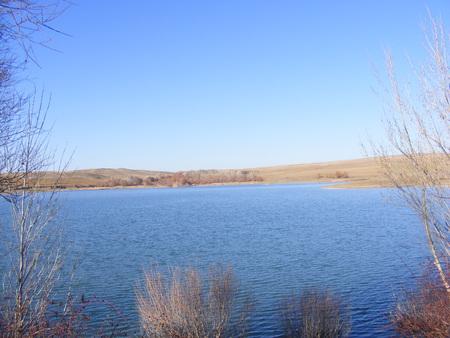 sobbing: Blue sky blue water, lake view through the reeds