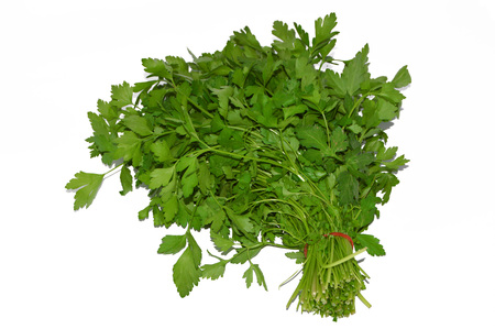 plantar: a bunch of parsley pictures