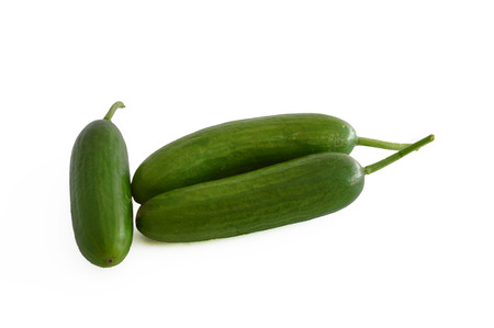 stock: cucumber stock photos