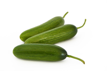 silos: high resolution pictures cucumber