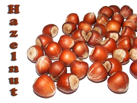 shelled: dry shelled nuts pictures