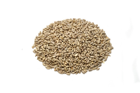 white background sunflower seeds pictures Stock Photo