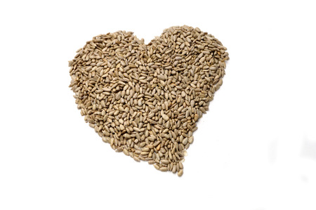 peeled: sunflower seeds pictures