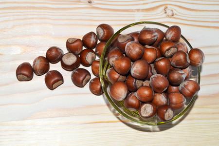 Dried hazelnut pictures