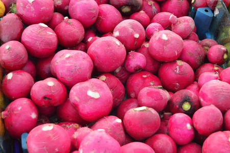 zvýšil: Organic and healthy radish and turnip pictures on greengrocery