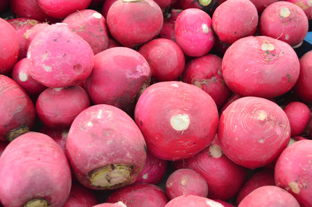 turnip: Organic and healthy turnip pictures on greengrocery