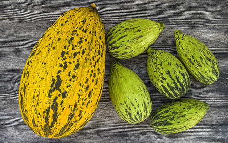 full immature small melons and fully ripe melon pictures, Banco de Imagens