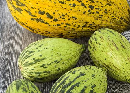 Volle unreife kleine Melonen und vollreife Melonenbilder, Standard-Bild - 86693867