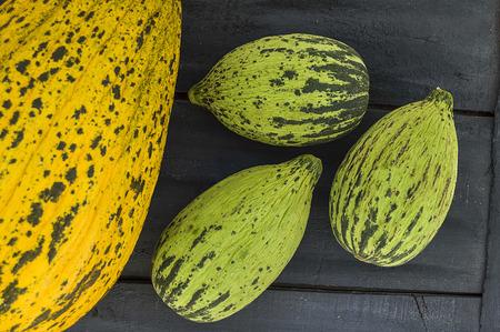 Volle unreife kleine Melonen und vollreife Melonenbilder, Standard-Bild - 86693869