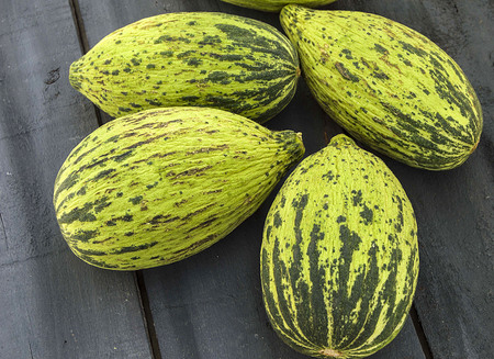 full immature small melons, raw melon pictures, cut a small melon with a knife, eat an immature melon, immature small melons,