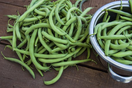 Fresh green bean paintings purchased for cooking, Chop with a knife and cook