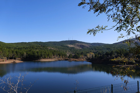 pictures of the city, pine trees and a lake view pictures, Banco de Imagens
