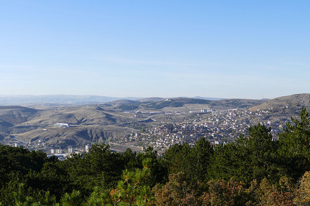 yozgat turkey and pine forests